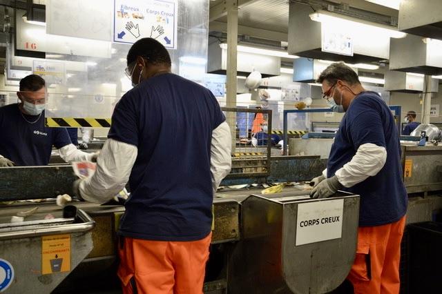 80 salariés travaillent au centre de tri de Suez sur l'Ecopôle du Jas de Rhodes. ©NBC