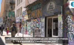 La CBD mania : Marseille au coeur d'un marché florissant